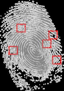Betriebliche Ermittlungen | Jörg Hausner Security